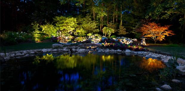 Belysning af træ